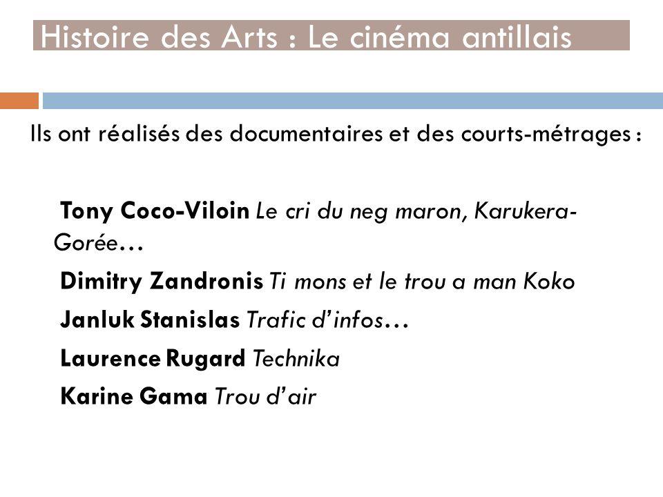 Ils ont réalisés des documentaires et des courts-métrages : Tony Coco-Viloin Le cri du neg maron, Karukera- Gorée… Dimitry Zandronis Ti mons et le tro