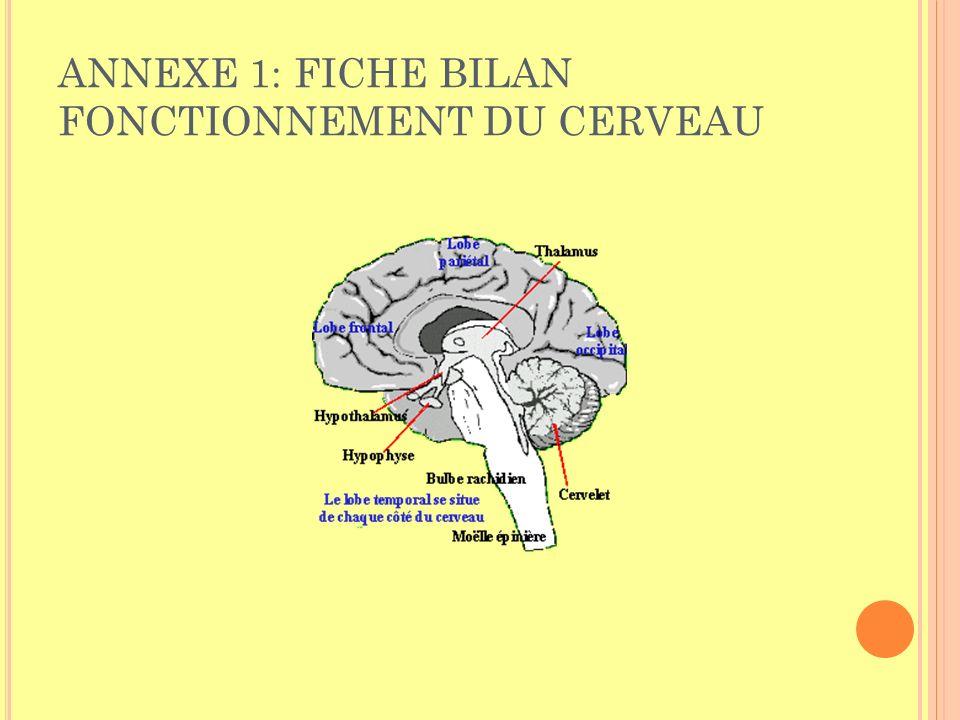Complète le résumé suivant : Le cerveau est le quartier général du système nerveux central.