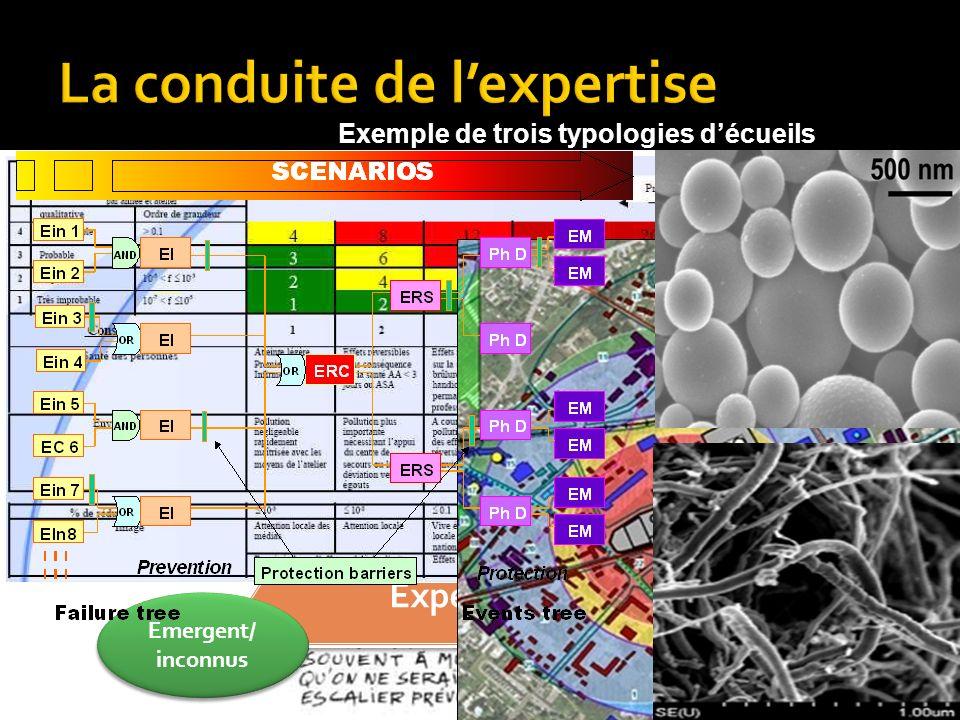 Validité et Expertise Validité et Expertise Enjeux/ Finalités Emergent/ inconnus Modèles/ outils Modèles/ outils Exemple de trois typologies décueils