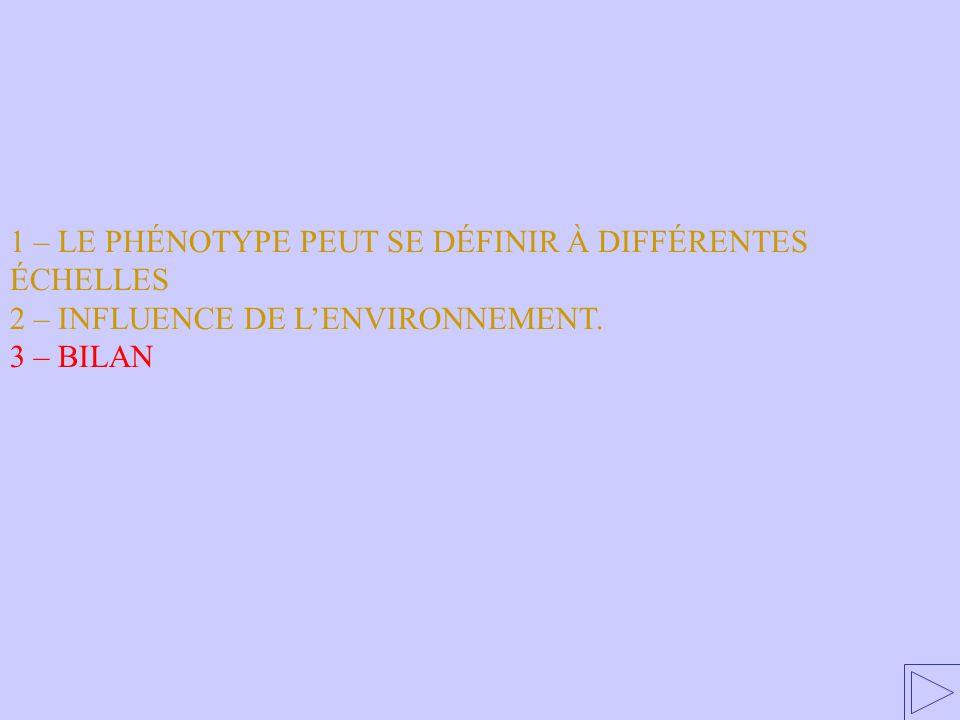1 – LE PHÉNOTYPE PEUT SE DÉFINIR À DIFFÉRENTES ÉCHELLES 2 – INFLUENCE DE LENVIRONNEMENT. 3 – BILAN