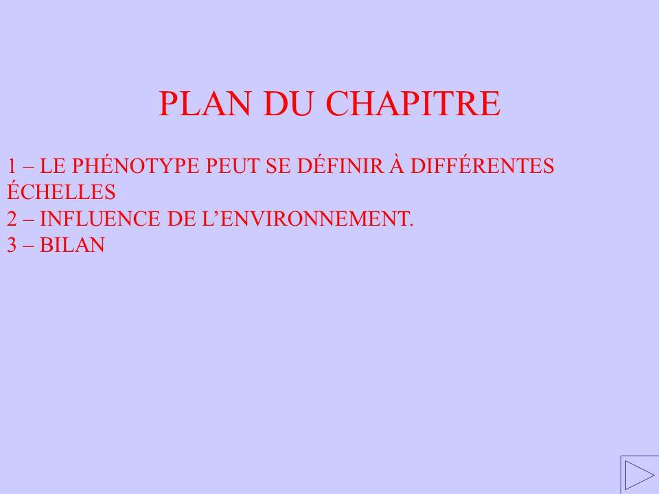 PLAN DU CHAPITRE 1 – LE PHÉNOTYPE PEUT SE DÉFINIR À DIFFÉRENTES ÉCHELLES 2 – INFLUENCE DE LENVIRONNEMENT. 3 – BILAN