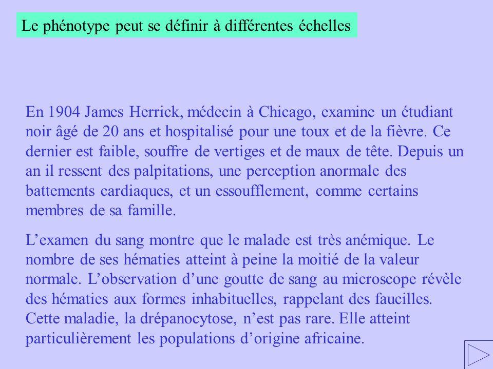 En 1904 James Herrick, médecin à Chicago, examine un étudiant noir âgé de 20 ans et hospitalisé pour une toux et de la fièvre. Ce dernier est faible,