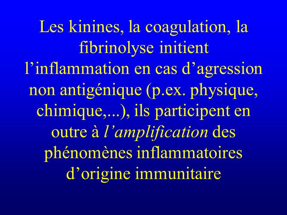 Les kinines, la coagulation, la fibrinolyse initient linflammation en cas dagression non antigénique (p.ex. physique, chimique,...), ils participent e