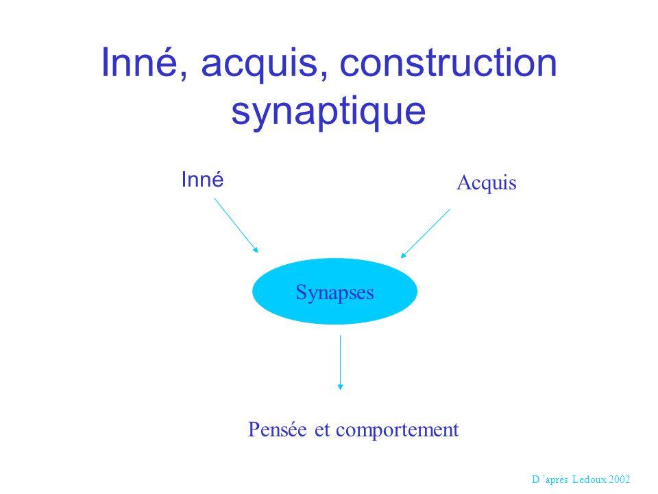 Inné, acquis, construction synaptique Synapses Acquis Inné Pensée et comportement D après Ledoux 2002