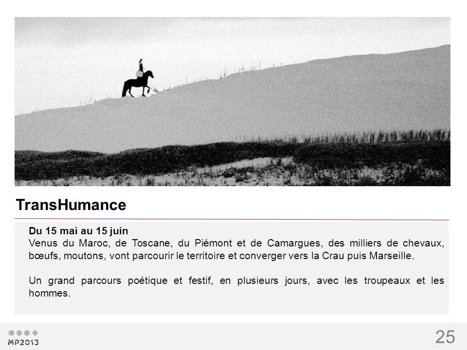 25 TransHumance Du 15 mai au 15 juin Venus du Maroc, de Toscane, du Piémont et de Camargues, des milliers de chevaux, bœufs, moutons, vont parcourir l