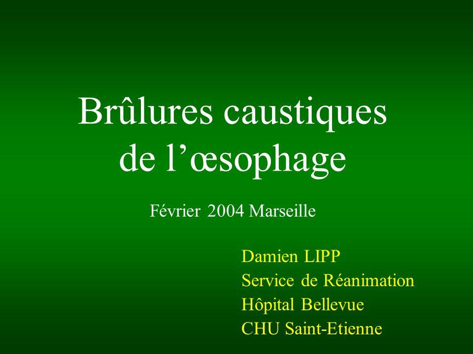 Brûlures caustiques de lœsophage Février 2004 Marseille Damien LIPP Service de Réanimation Hôpital Bellevue CHU Saint-Etienne