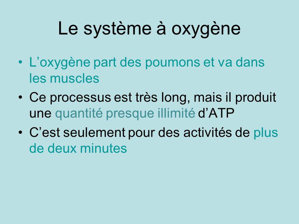Le système à oxygène Loxygène part des poumons et va dans les muscles Ce processus est très long, mais il produit une quantité presque illimité dATP C