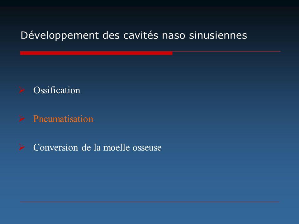 Développement des cavités naso sinusiennes Ossification Pneumatisation Conversion de la moelle osseuse