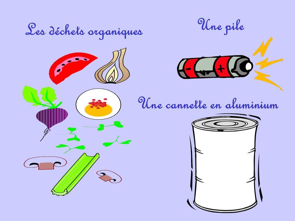 Les déchets organiques Une cannette en aluminium Une pile