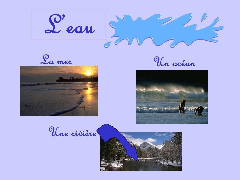Leau La mer Un océan Une rivière