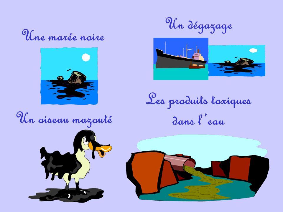 Une marée noire Un dégazage Un oiseau mazouté Les produits toxiques dans leau