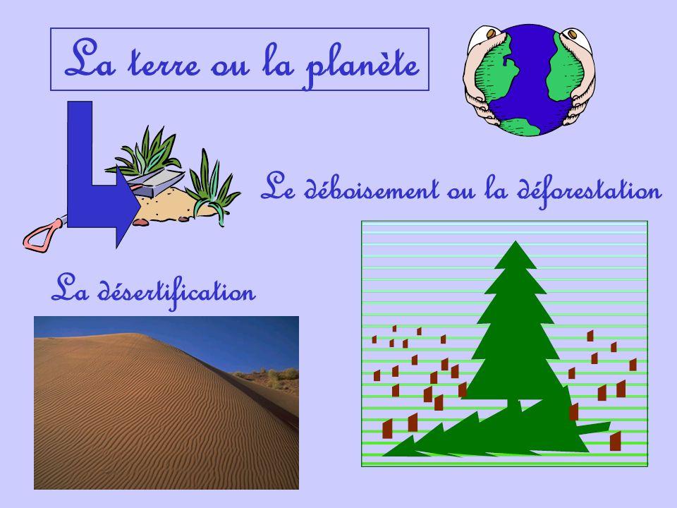 La terre ou la planète Le déboisement ou la déforestation La désertification