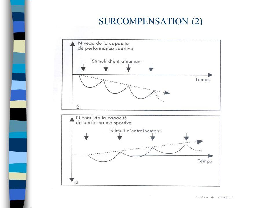 Entraînement SOURCES ENERGETIQUES Caractéristiques des filières énergétiques Ordre séquentiel de lentraînement de la PUISSANCE et de la CAPACITE Protocoles - volume - intensité - récupération - surcompensation - fréquence