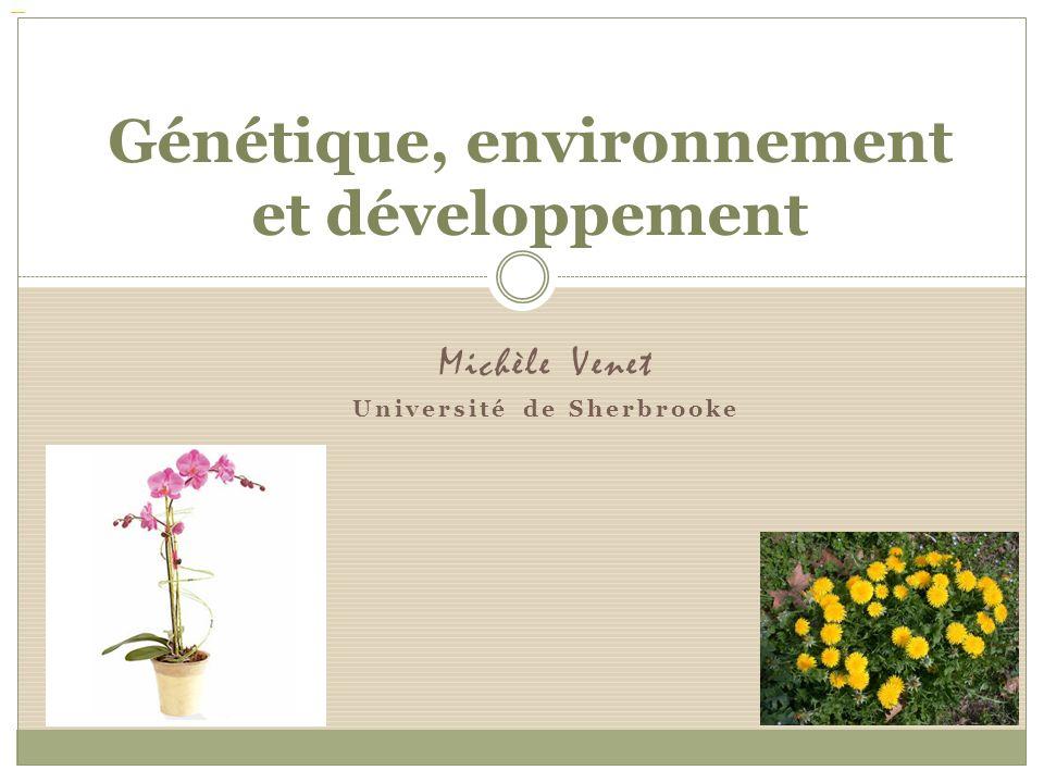 Michèle Venet Université de Sherbrooke Génétique, environnement et développement