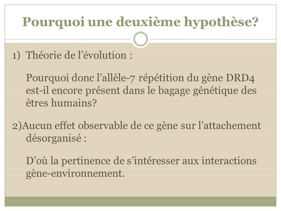 Pourquoi une deuxième hypothèse? 1)Théorie de lévolution : Pourquoi donc lallèle-7 répétition du gène DRD4 est-il encore présent dans le bagage généti