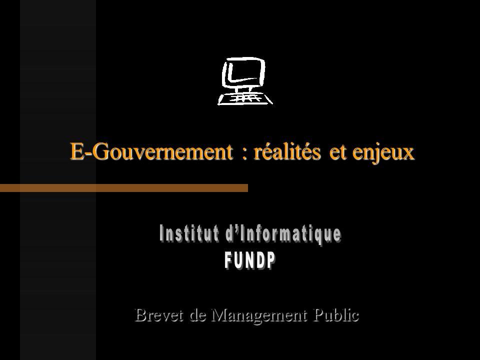 E-Gouvernement : réalités et enjeux Brevet de Management Public