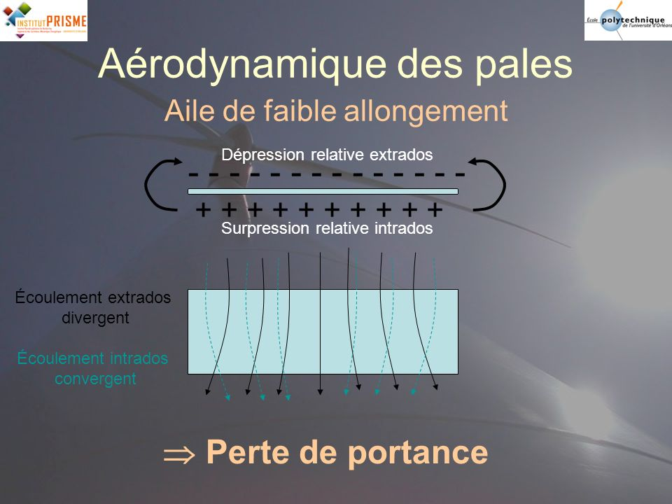 Aérodynamique des pales Aile de faible allongement Dépression relative extrados Surpression relative intrados - - - - - - - + + + + + Écoulement extra