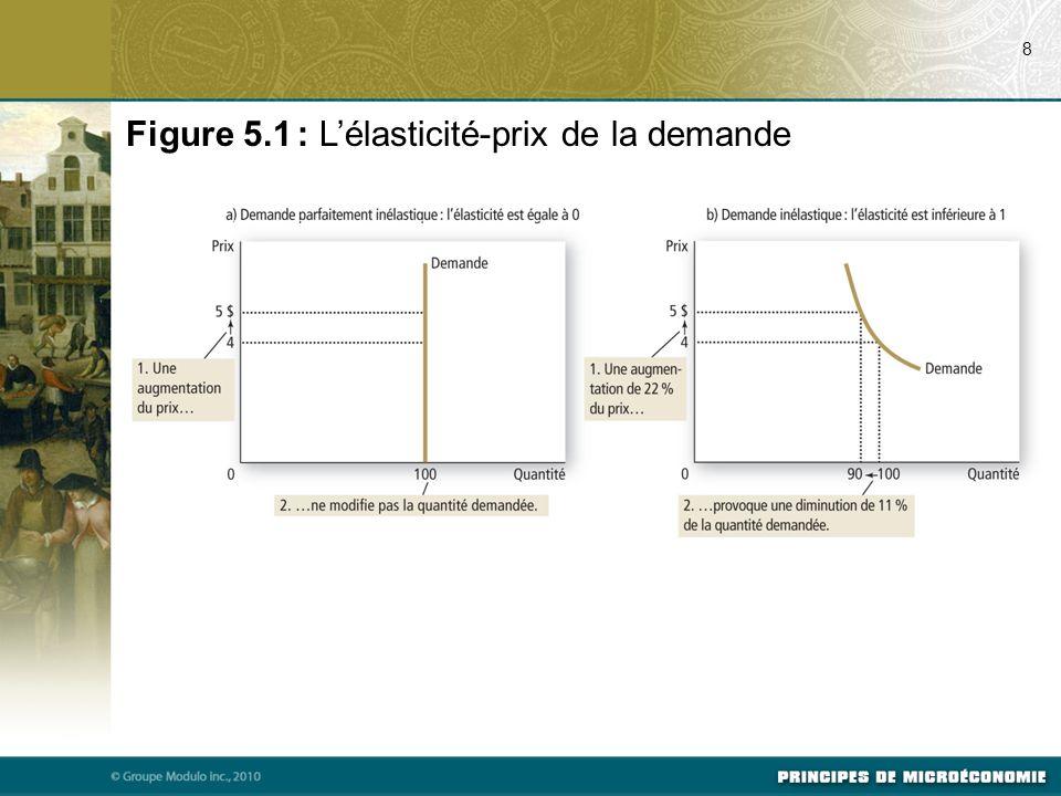 Figure 5.1 : Lélasticité-prix de la demande 8