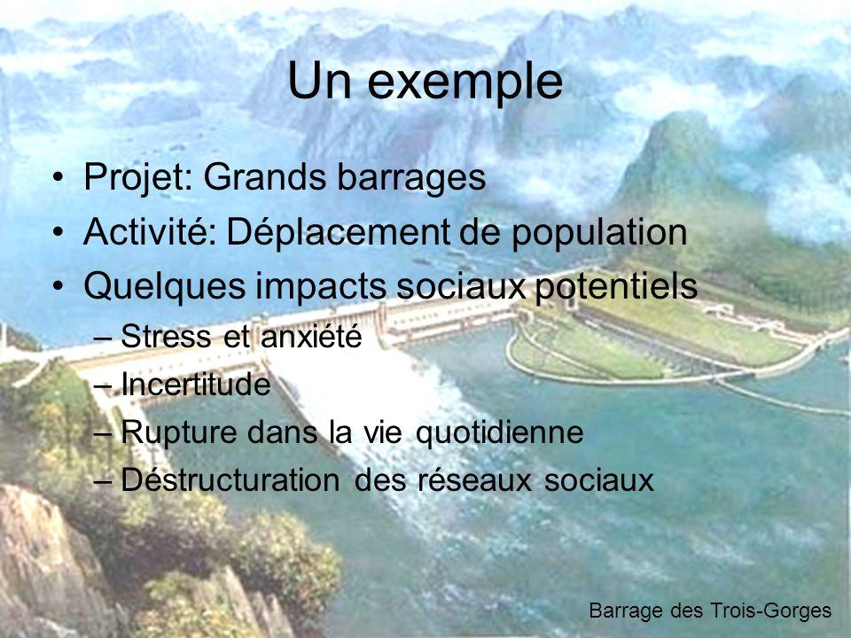 Un exemple Projet: Grands barrages Activité: Déplacement de population Quelques impacts sociaux potentiels –Stress et anxiété –Incertitude –Rupture da
