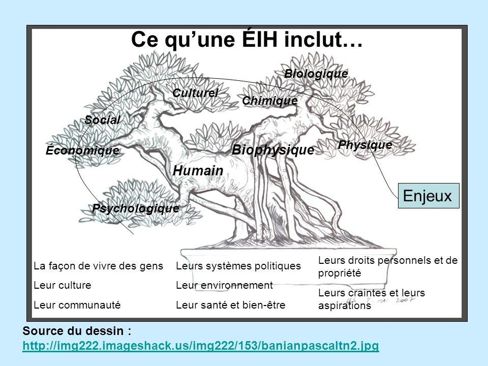 Défis de lÉIH Reconnaissance Coopération disciplinaire Intégration environnementale Focalisation et optimisation (ÉIE) Évaluation des effets multi-causaux Prise en compte de tous les acteurs