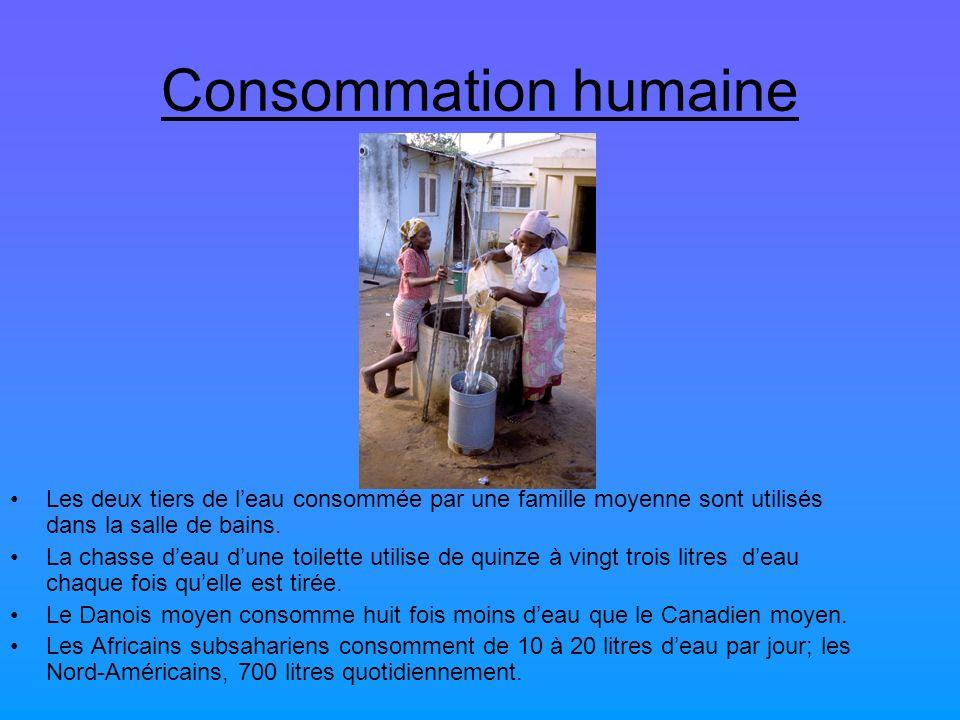 Consommation humaine Les deux tiers de leau consommée par une famille moyenne sont utilisés dans la salle de bains. La chasse deau dune toilette utili