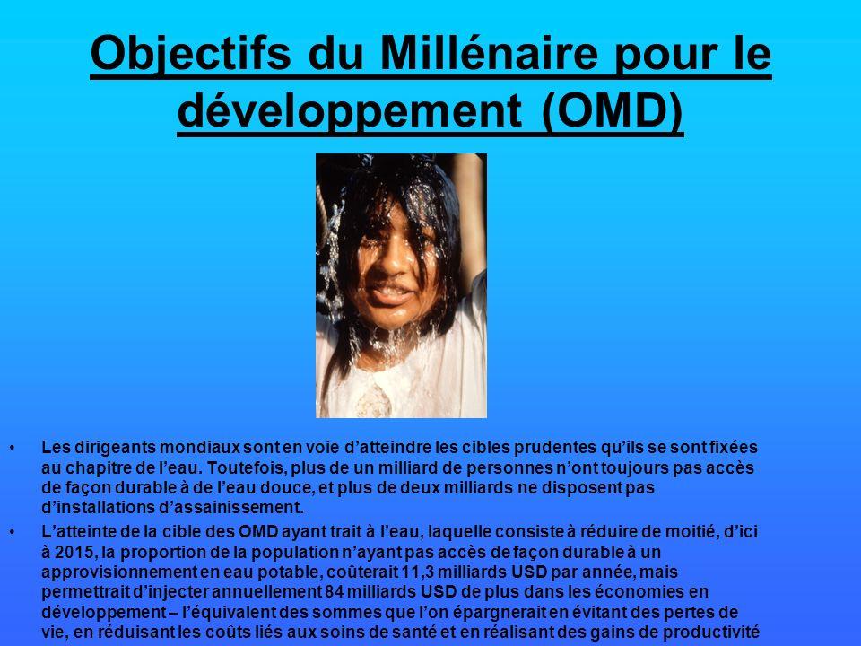 Objectifs du Millénaire pour le développement (OMD) Les dirigeants mondiaux sont en voie datteindre les cibles prudentes quils se sont fixées au chapi