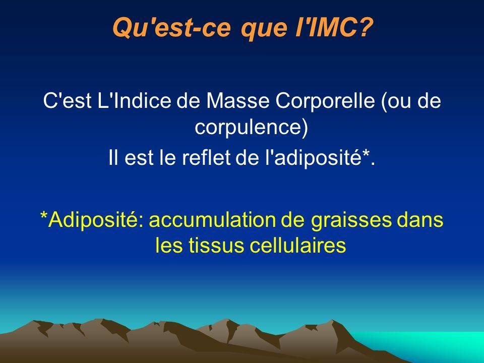 Qu est-ce que l IMC.