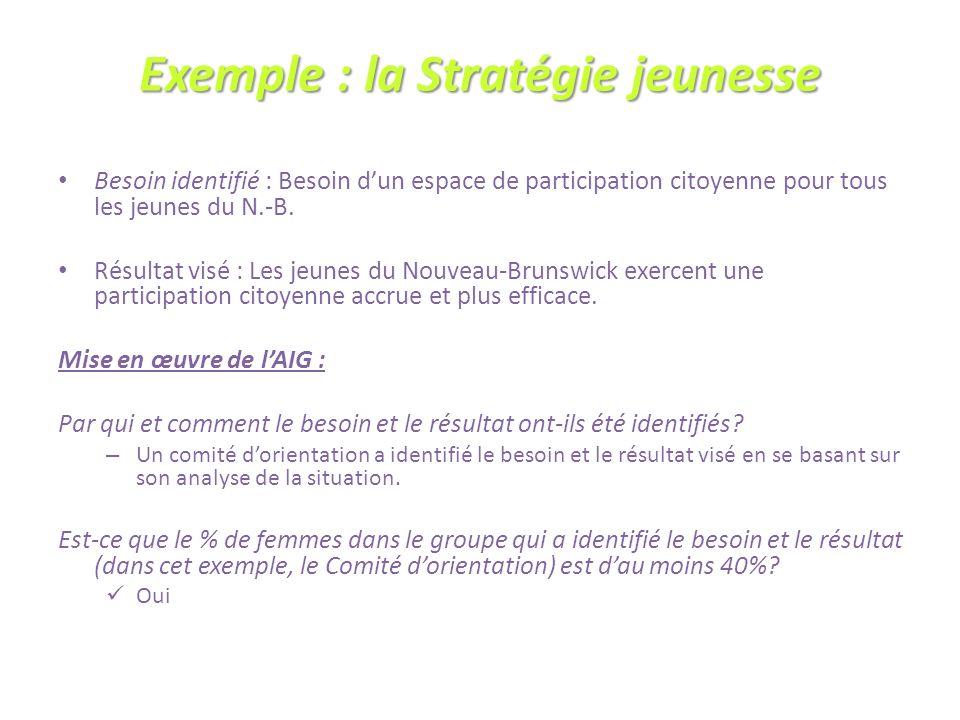Exemple : la Stratégie jeunesse Besoin identifié : Besoin dun espace de participation citoyenne pour tous les jeunes du N.-B.