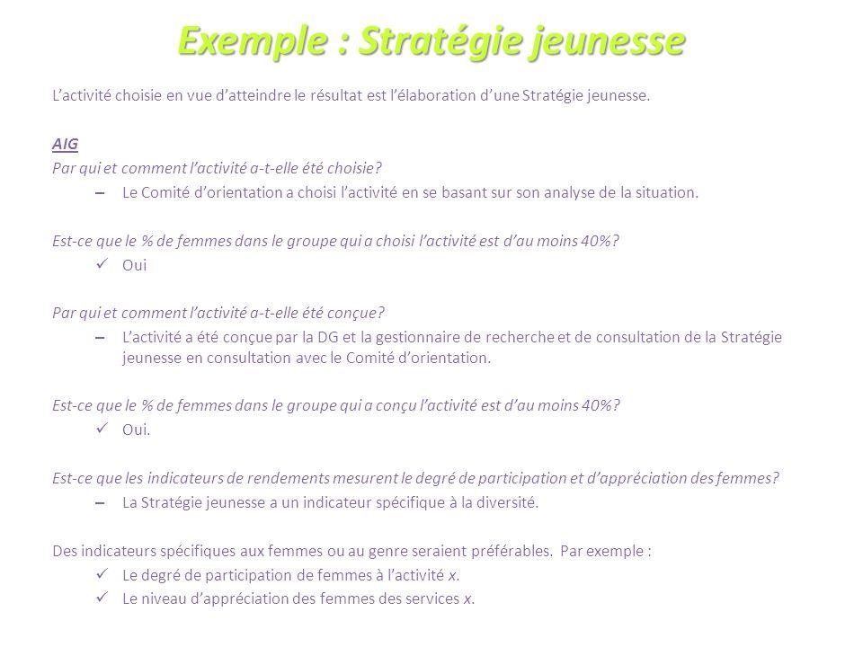 Exemple : Stratégie jeunesse Lactivité choisie en vue datteindre le résultat est lélaboration dune Stratégie jeunesse.