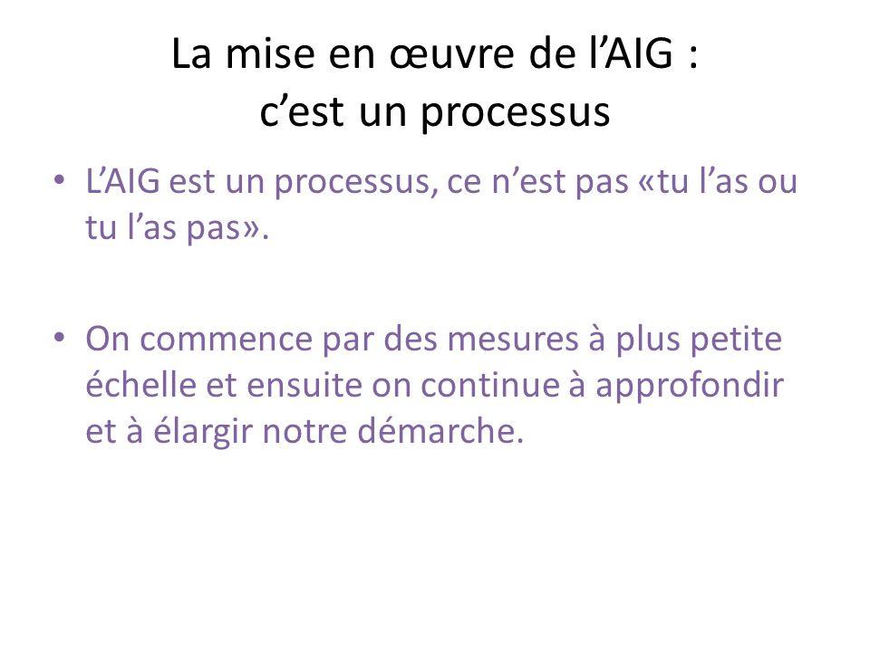 La mise en œuvre de lAIG : cest un processus La mise en œuvre de lanalyse inclusive selon le genre peut être divisée en 2 étapes : 1.Desservir son groupe cible de façon équitable (externe).