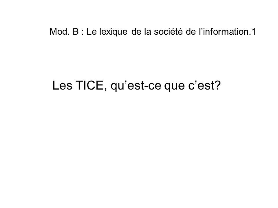 Mod. B : Le lexique de la société de linformation.1 Les TICE, quest-ce que cest?
