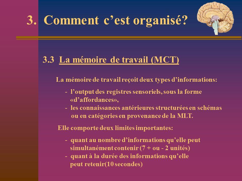 3. Comment cest organisé? 3.3 La mémoire de travail (MCT) La mémoire de travail reçoit deux types dinformations: - loutput des registres sensoriels, s