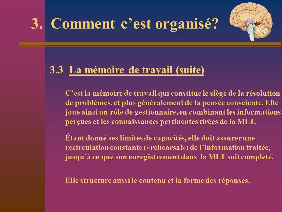 3. Comment cest organisé? 3.3 La mémoire de travail (suite) Cest la mémoire de travail qui constitue le siège de la résolution de problèmes, et plus g