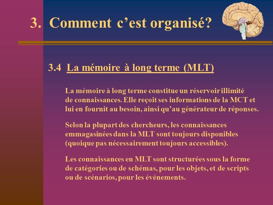 3. Comment cest organisé? 3.4 La mémoire à long terme (MLT) La mémoire à long terme constitue un réservoir illimité de connaissances. Elle reçoit ses