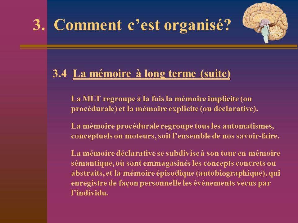 3. Comment cest organisé? 3.4 La mémoire à long terme (suite) La MLT regroupe à la fois la mémoire implicite (ou procédurale) et la mémoire explicite
