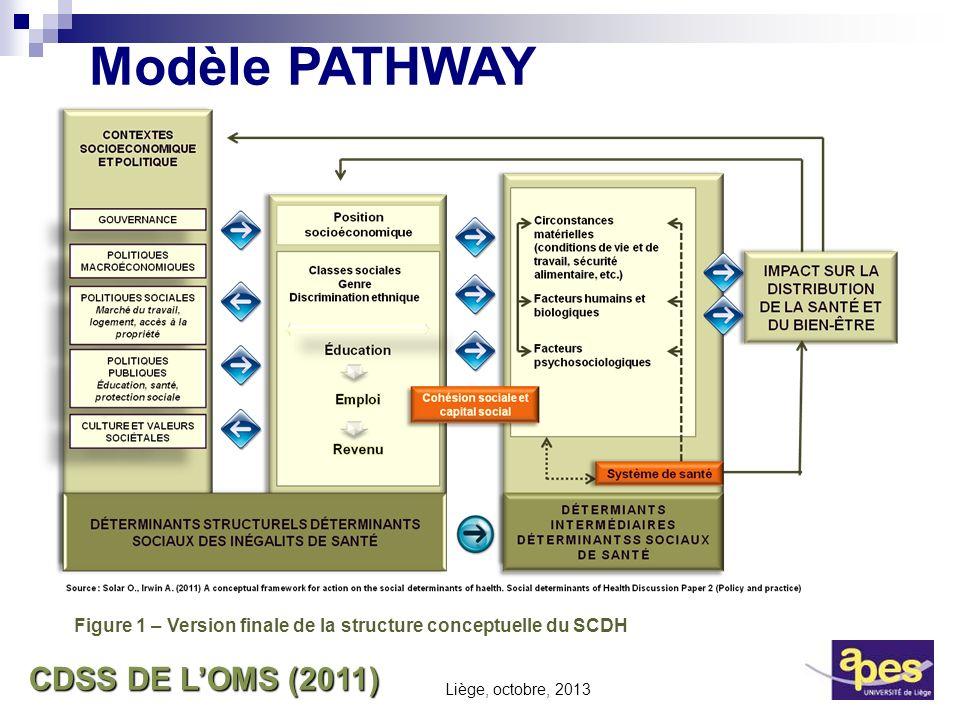 CDSS DE LOMS (2011) Figure 1 – Version finale de la structure conceptuelle du SCDH Modèle PATHWAY Liège, octobre, 2013