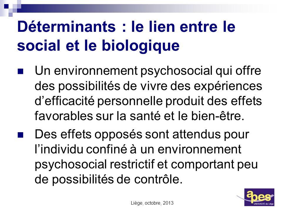 Déterminants : le lien entre le social et le biologique Un environnement psychosocial qui offre des possibilités de vivre des expériences defficacité
