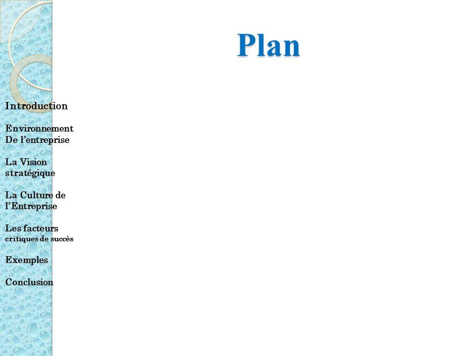 Plan Introduction Environnement De lentreprise La Vision stratégique La Culture de lEntreprise Les facteurs critiques de succès Exemples Conclusion