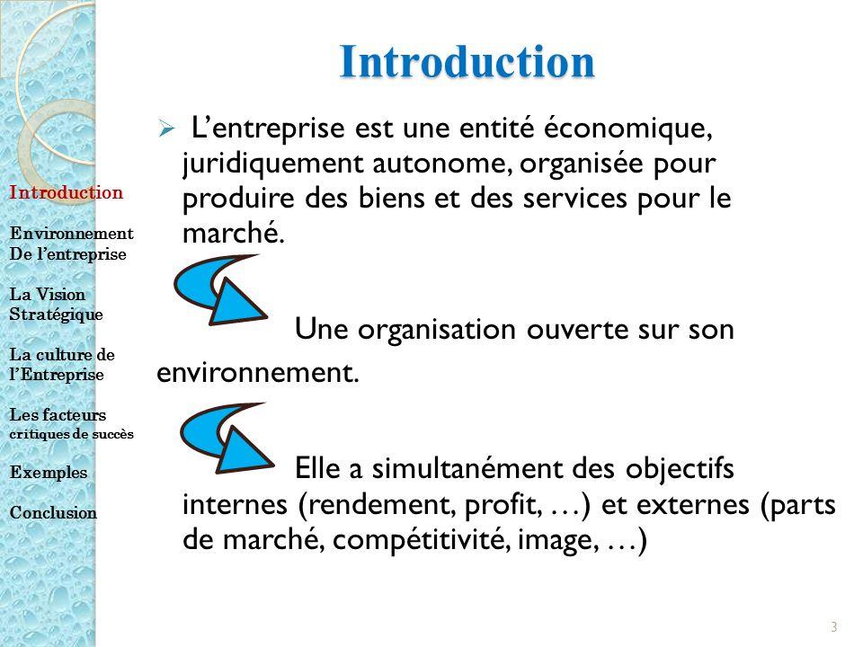 Introduction Lentreprise est une entité économique, juridiquement autonome, organisée pour produire des biens et des services pour le marché. Une orga