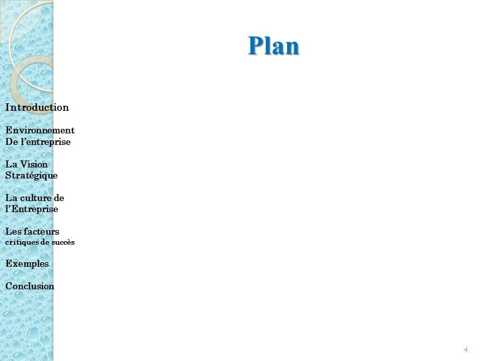 Plan Introduction Environnement De lentreprise La Vision Stratégique La culture de lEntreprise Les facteurs critiques de succès Exemples Conclusion 4