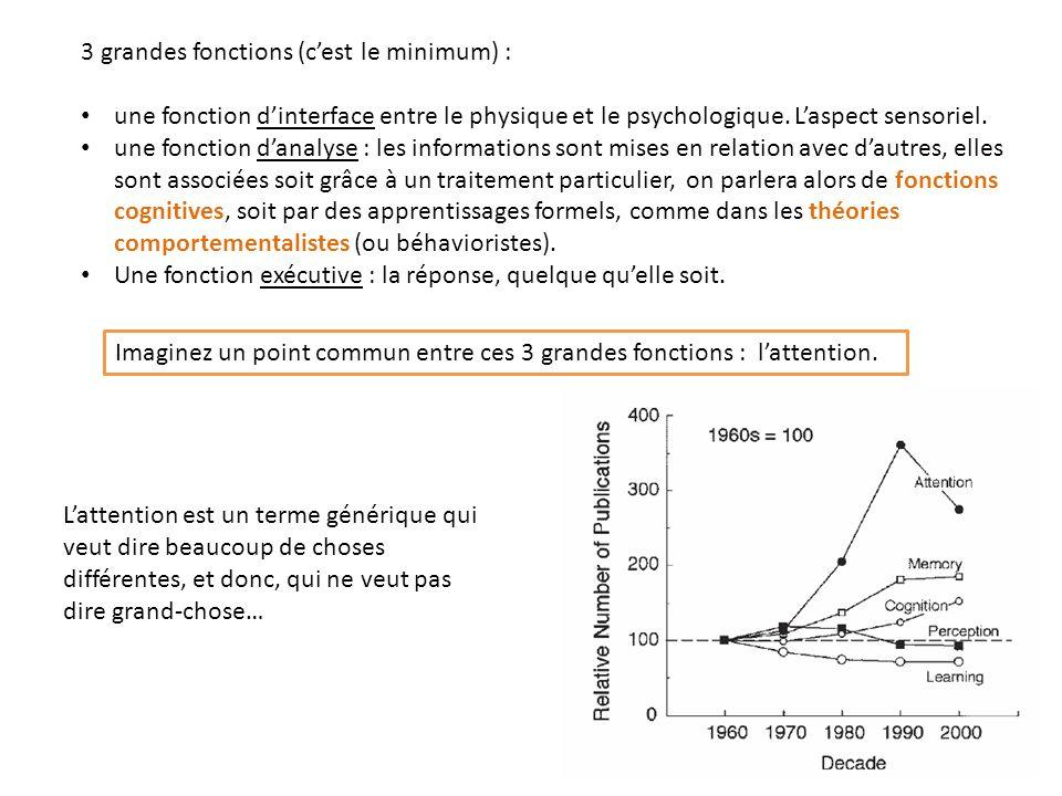 3 grandes fonctions (cest le minimum) : une fonction dinterface entre le physique et le psychologique. Laspect sensoriel. une fonction danalyse : les