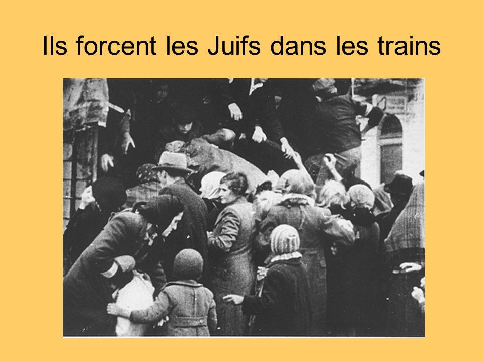 Ils forcent les Juifs dans les trains