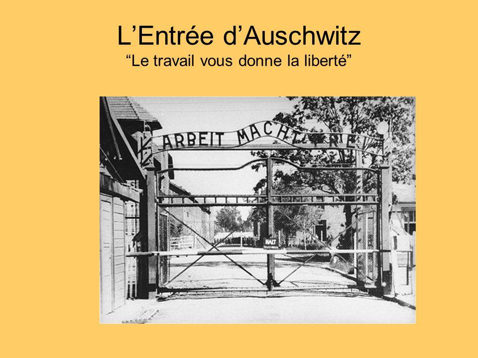 LEntrée dAuschwitz Le travail vous donne la liberté