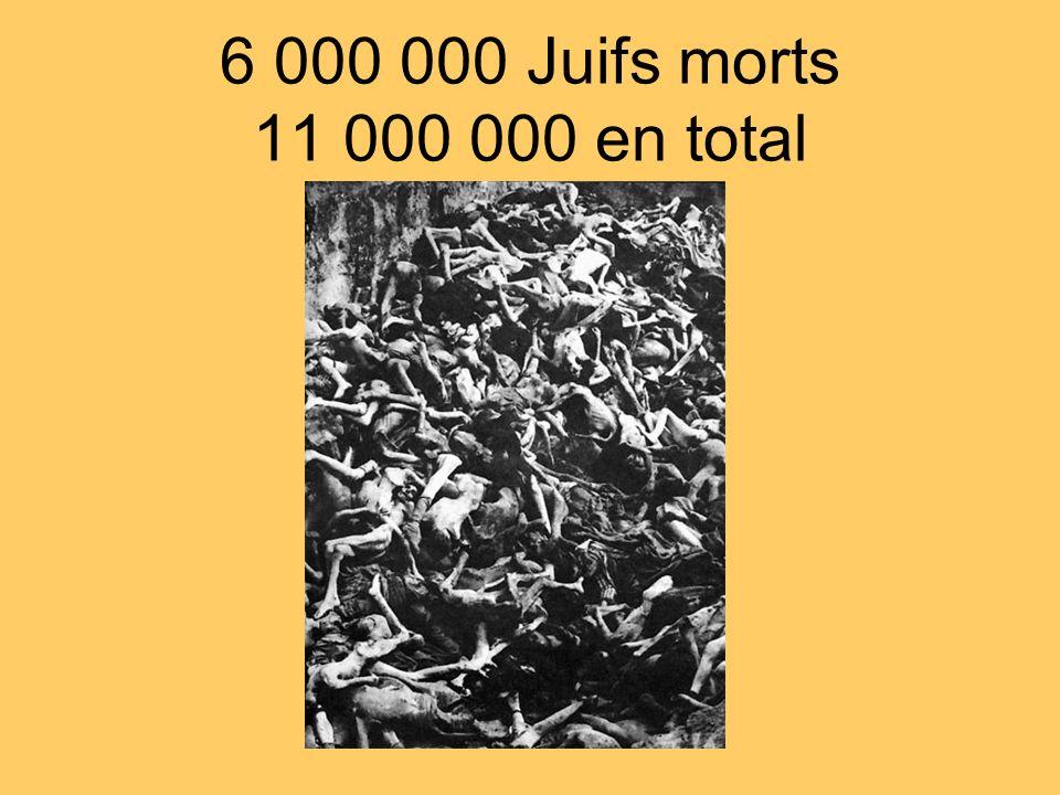 6 000 000 Juifs morts 11 000 000 en total