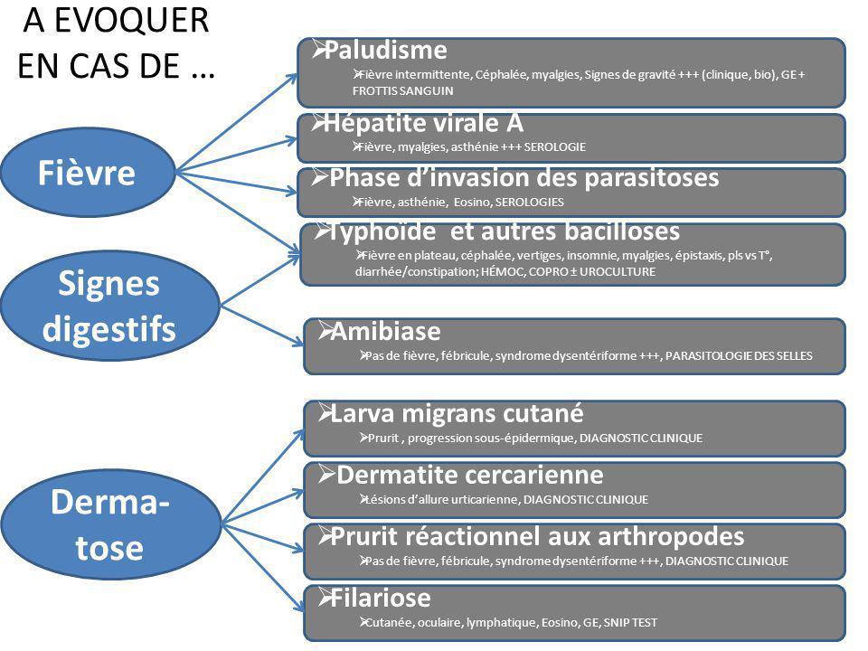 A EVOQUER EN CAS DE … Fièvre Signes digestifs Derma- tose Larva migrans cutané Prurit, progression sous-épidermique, DIAGNOSTIC CLINIQUE Dermatite cer