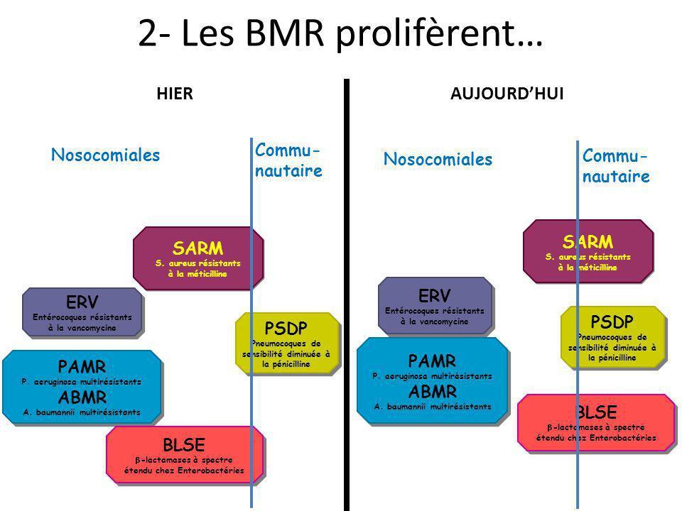 Nosocomiales Commu- nautaire 2- Les BMR prolifèrent… ERV Entérocoques résistants à la vancomycine ERV Entérocoques résistants à la vancomycine PSDP Pn