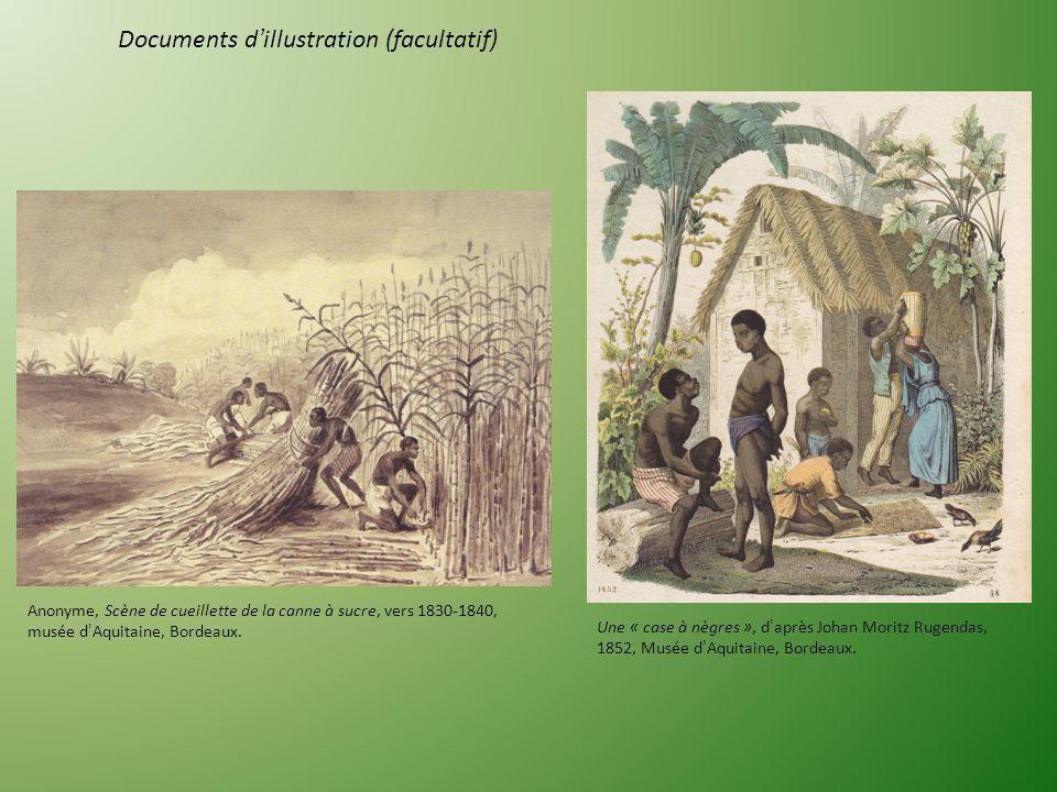 1) A laide de la légende, complétez le document 1 en utilisant les mots soulignés. 2) Dans cette plantation, où les esclaves travaillent-ils? A. Le tr