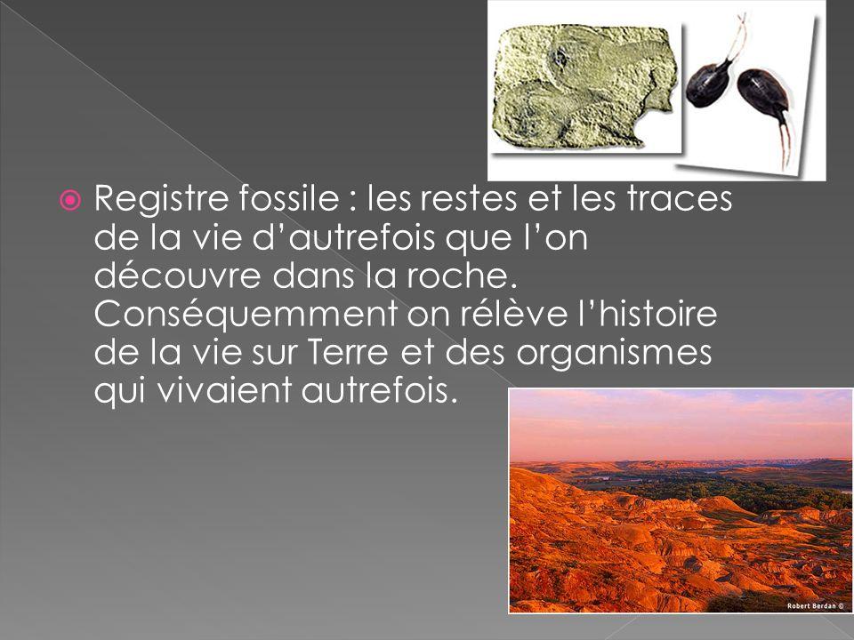 Registre fossile : les restes et les traces de la vie dautrefois que lon découvre dans la roche. Conséquemment on rélève lhistoire de la vie sur Terre