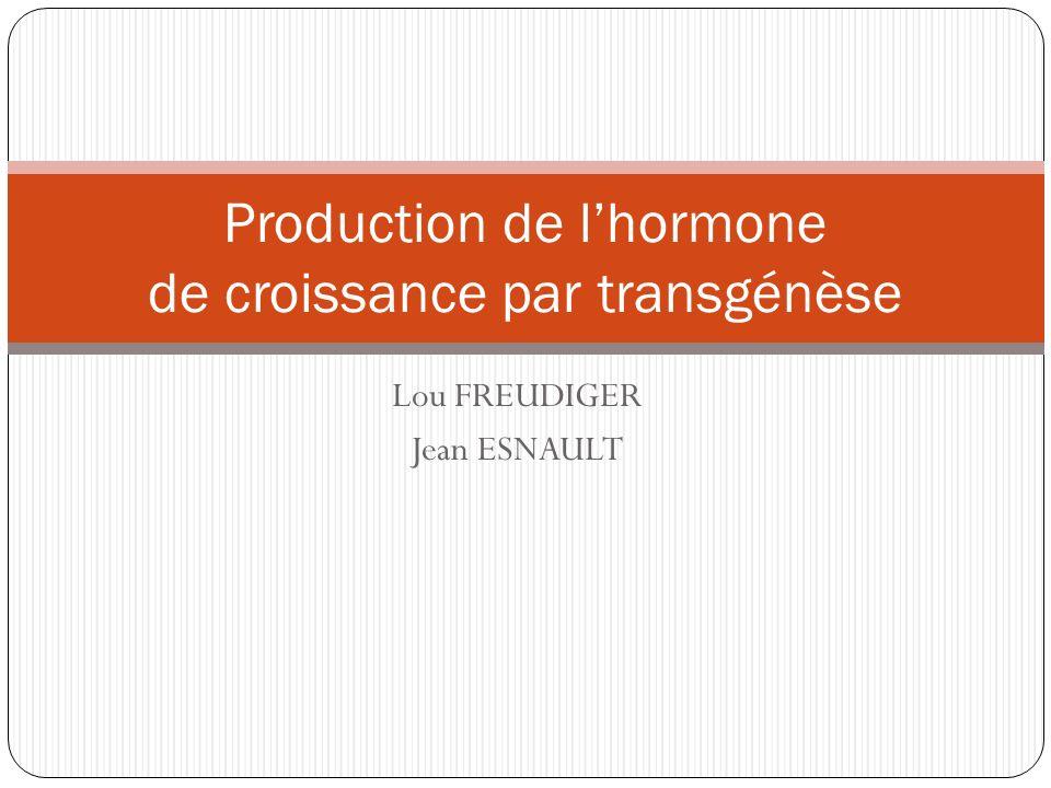 Lou FREUDIGER Jean ESNAULT Production de lhormone de croissance par transgénèse