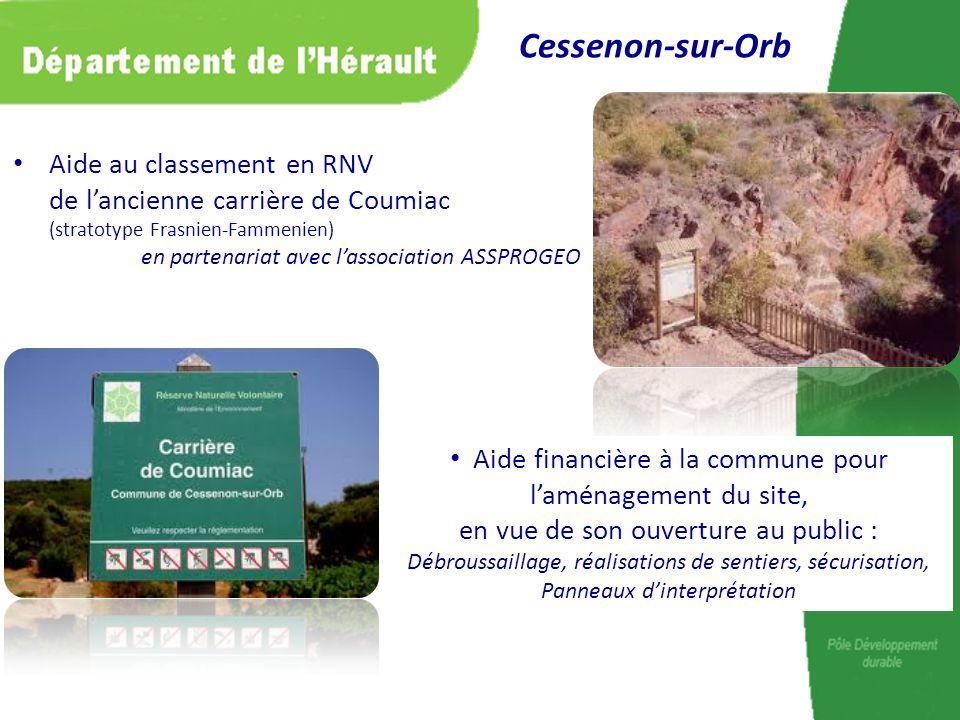 Aide au classement en RNV de lancienne carrière de Coumiac (stratotype Frasnien-Fammenien) en partenariat avec lassociation ASSPROGEO Cessenon-sur-Orb